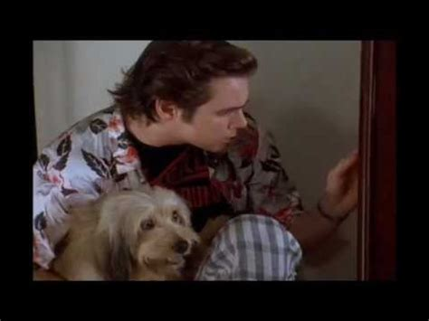 Ace Ventura Pet Detective: Animals CAN Sence Evil - YouTube