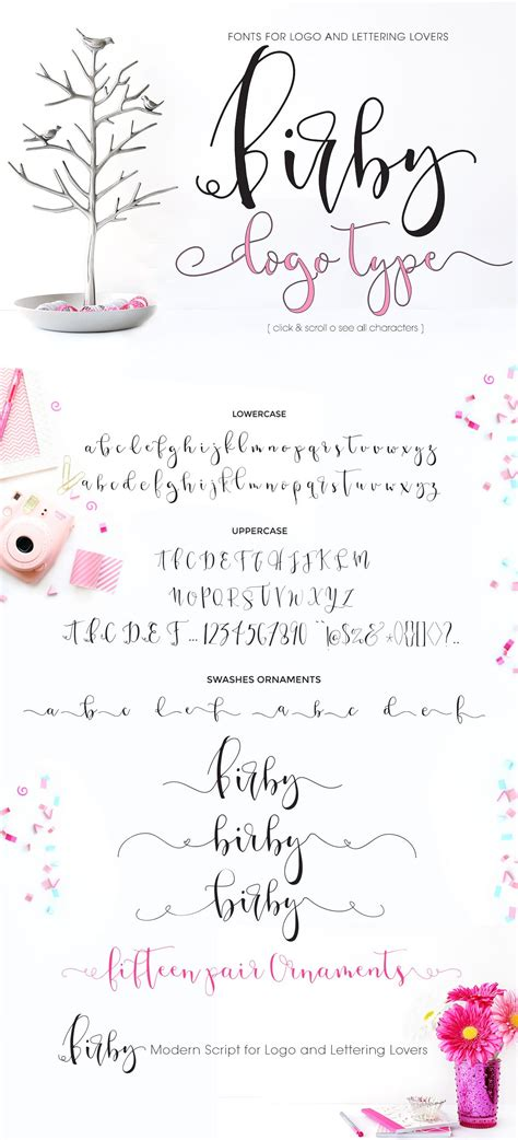 Birby Font - Bold and Light ~ Script Fonts ~ Creative Market